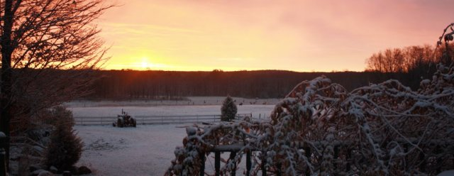 Gallery - Winter Sunrise in our back yard